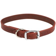 <strong>Coastal Pet Products</strong> Latigo Leather Dog Collar in Latigo
