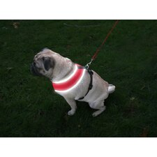 Nite Brite Reflect Dog Harness