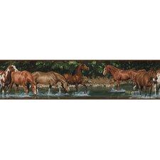 Studio Designs Wild Horses Wallpaper Border