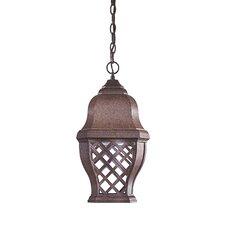Arbor Hill 1 Light Chain Hung Indoor/Outdoor Lantern