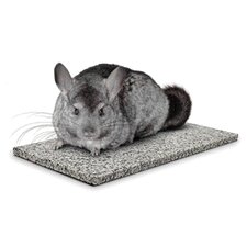 Chinchilla Chiller
