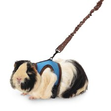 <strong>Super Pet</strong> Harness with Stretchy Stroller
