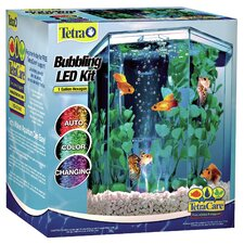 1 Gallon Bubbling Hexagon Aquarium Kit