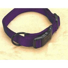 Adjustable Dog Collar in Hot Purple