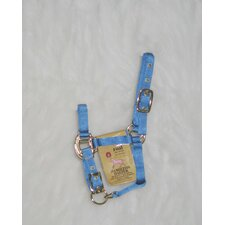 Adjustable Chin Halter Foal