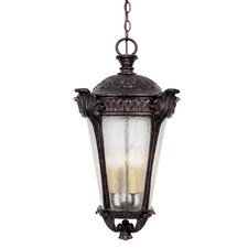 Pompia 4 Light Hanging Lantern