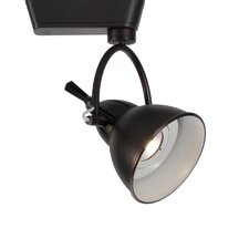 1 Light Cartier Track Luminaire Flood Lens