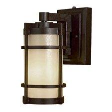 Andrita Court 1 Light Outdoor Wall Lantern