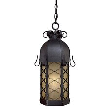 Montalbo 1 Light Outdoor Hanging Lantern