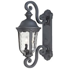 <strong>Great Outdoors by Minka</strong> Ardmore Outdoor Wall Lantern