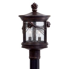 Abbey Lane 2 Light Outdoor Post Lantern