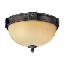 <strong>Metropolitan by Minka</strong> Catalonia 2 Light Flush Mount