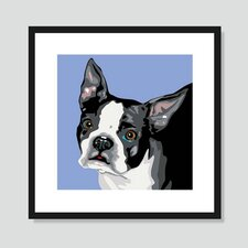 Boston Terrier Graphic Art