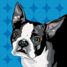 Pooch Décor Boston Terrier Portrait Graphic Art on Canvas