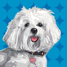 Pooch Décor Havanese Portrait Graphic Art on Canvas