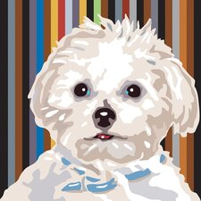 Pooch Décor Maltese Portrait Graphic Art on Canvas