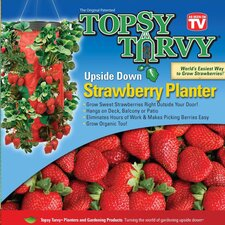 Strawberry Round Planter