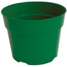 Round Grower Pot (Set of 36)