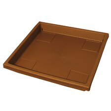 Accent Trays