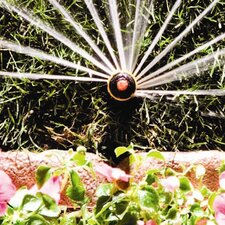 Half Circle Spray Pop Up Mini Rotor