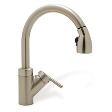 Rados Single Handle Single Hole Kitchen Faucet with Rados Pull-Out Spray