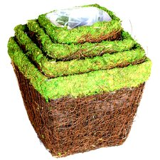 <strong>SuperMoss™</strong> Ventura Moss Baskets (Set of 4)