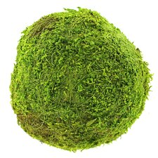 "<strong>SuperMoss™</strong> 6"" Green Moss Ball"