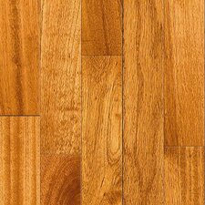 "Elegant Exotic 3-5/8"" Solid Cherry Flooring in Rengas"