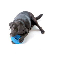 Orka Tire Dog Toy