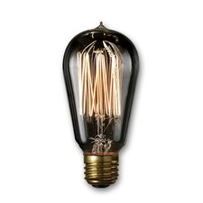 Warm White Incandescent Light Bulb