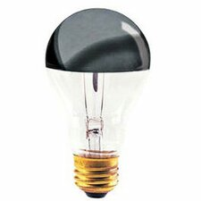 100W 120-Volt Light Bulb