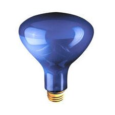 120-Volt Light Bulb