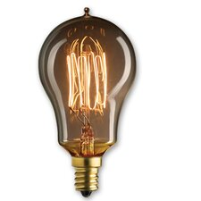 Nostalgic Edison 25W Incandescent Light Bulb