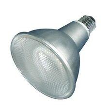 15W 120-Volt (3000K) Compact Fluorescent Light Bulb (Set of 2)