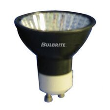 50W MR16 Halogen Flood Bulb in Black