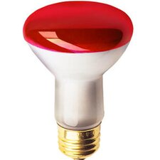 50W Colored Halogen Light Bulb (Set of 8)
