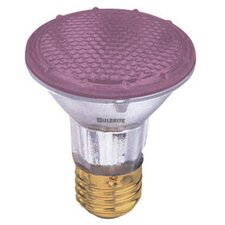 50W Pink 120-Volt Halogen Light Bulb