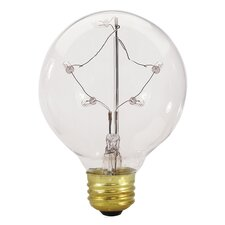E26 Medium Base Incandescent Starlight G25 Globe Bulb