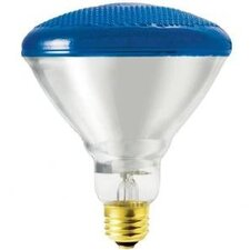 100W Blue Incandescent Light Bulb (Set of 2)