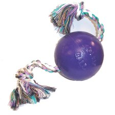 <strong>Jolly Pets</strong> Romp And Roll Ball Dog Toy