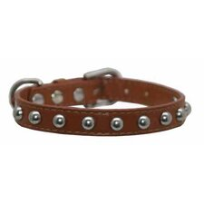 Silver Stud Dog Collar in Tan