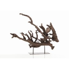 Kazu Dragon Tree Root Sculpture in Natural