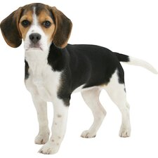 <strong>4 Walls</strong> Puppy Love Beagle Wall Decal