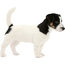 Puppy Love Jack Russell Terrier Wall Decal