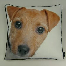 Lava Jack Russel Pillow