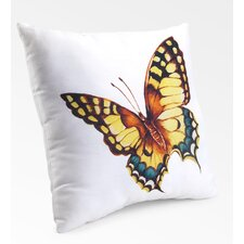 Lava Flutterby Pillow