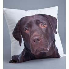 Lab Polyester Pillow