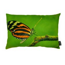 Butterfly on Twig Polyester Pillow