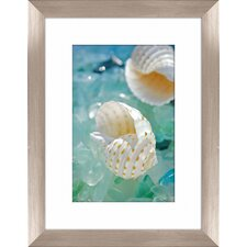 Sea Glass Shells I Framed Photographic Print