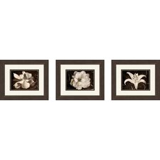 Garden Journal Framed Art (Set of 3)
